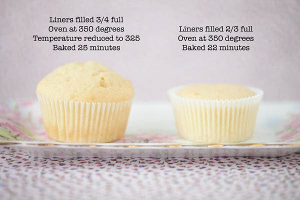 Side by side comparison of the results of baking flat versus puffy dome-topped cupcakes.