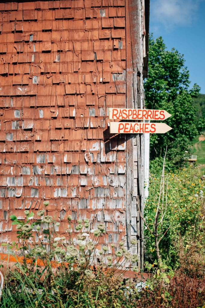 A chippy red barn building with a hand painted sign for raspberries and peaches.